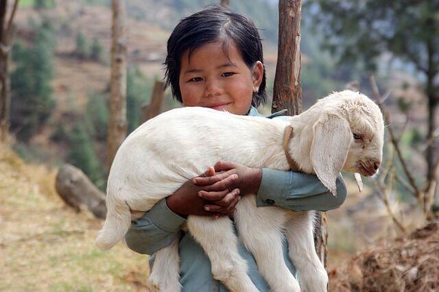nepal-1504853_640