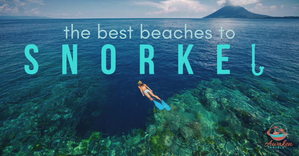 The Top 5 Snorkel Destinations in the World