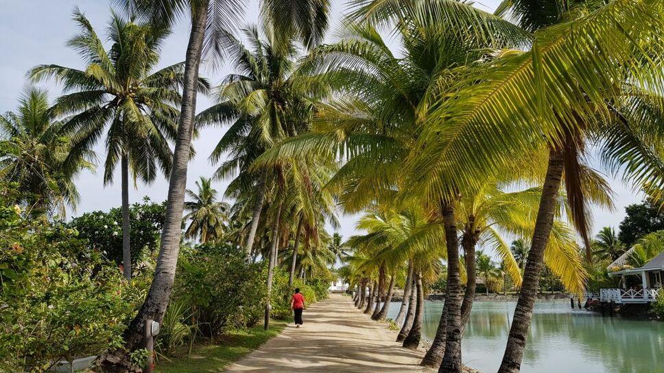 Fiji boardwalk