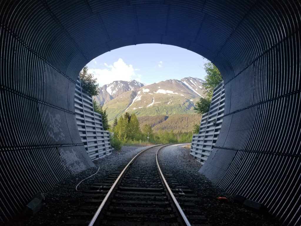 Alaskan railroad in the summer